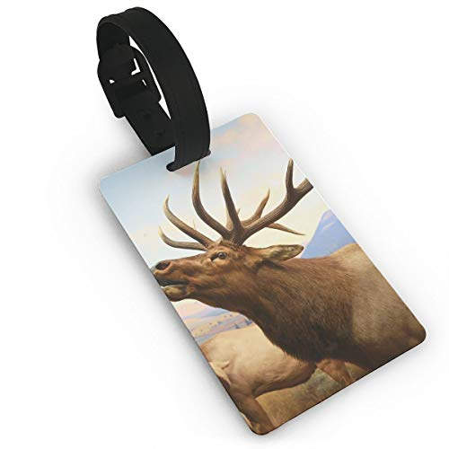 Diemeouk Luggage Tags for Suitcases Super Jumbo Sky Deer PVC Baggage Cards for Cruise -
