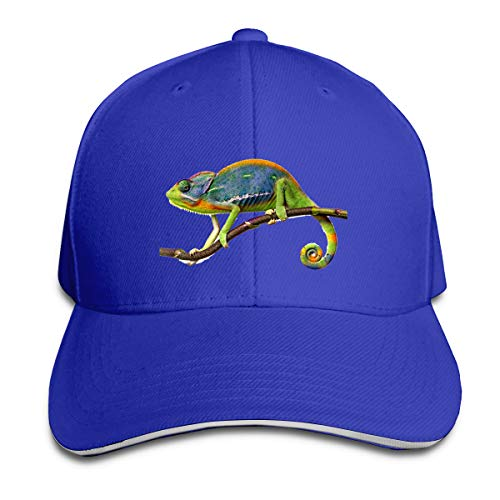 Shenigon Chameleon Cap Unisex Low Profile Cotton Hat Baseball Caps Blue