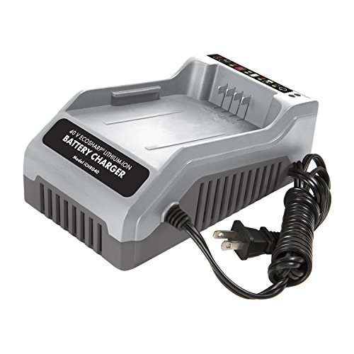 Snow Joe 40-Volt EcoSharp Lithium-Ion Battery Charger