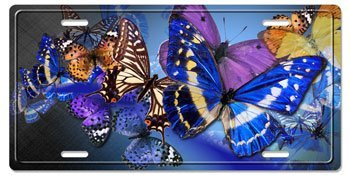 License Plates Butterflies Want to Fly Decorative License Plates Creare/'s Coolart