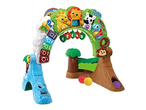 LeapFrog Learning Safari Playspace