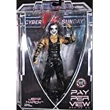 WWE Jeff Hardy Cyber Sunday Figure