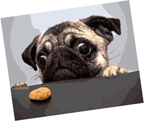 Pintura por Numeros Con Marco (ITM27075) perro