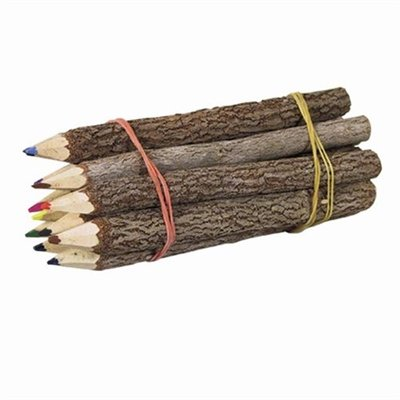 branch colored pencils - 4