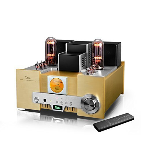 YAQIN MS-650B 845*2 Class A Single Ended Integrated Tube Amplifier with Remote Control YAQIN