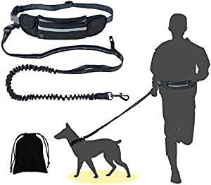 Sweepstakes: ALIOO Dog Hands Strip Free