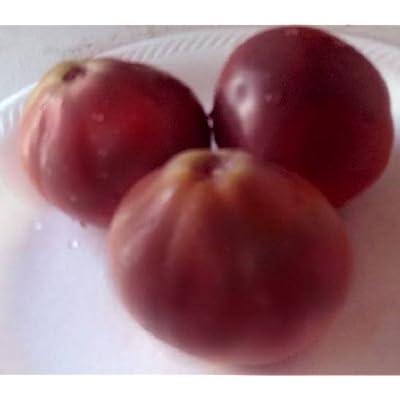 Tomato Organic Japanese Black Trifele Tomato 20 Seeds : Tomato Plants : Garden & Outdoor