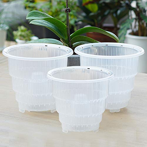 Meshpot Clear Plastic Orchid Pots With Holes - 3 Pack (2Pcs 7 Inch Pot,1Pc 6 Inch Pot)