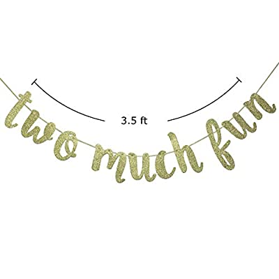 Two Much Fun Banner, 2nd Birthday Garland Sign Party Decorations Anniversary Decor Photo Booth Props Gold: Toys & Games