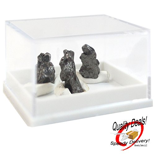 3-three-authentic-meteorites-from-campo-del-cielo-in-display-case-with-certificate-of-authenticity