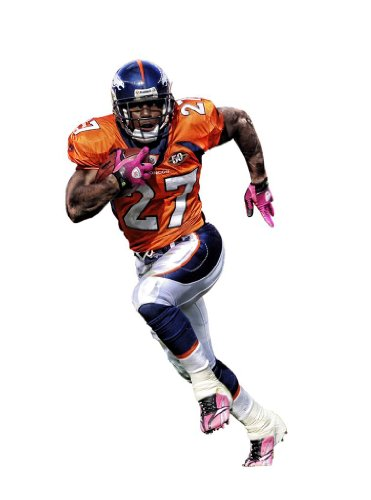Knowshon Moreno 18X24 Metal Aluminum Wall Art #1