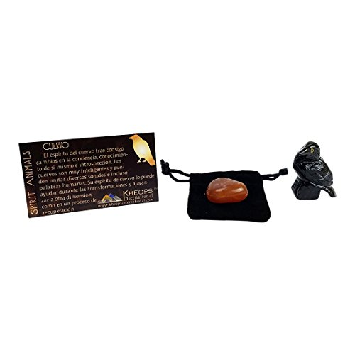 "Raven Black Onyx Hand-Carved 1.5"" Spirit Animal with Tumbled Carnelian Stone in a Velvet Pouch, Crystal Set Aids in Chakra Healing and Astral Projection Travel by Imprints Plus (33646)"