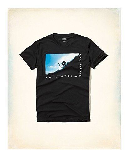 Hollister-HCO-Mens-Logo-Graphic-T-shirt-Tee-Black-Blue-and-much-more