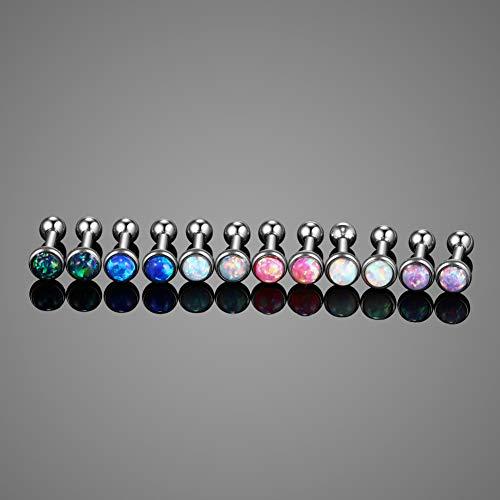 99997770e Xpircn 16G Stainless Steel Ear Stud Piercing Barbell Studs Earrings ...