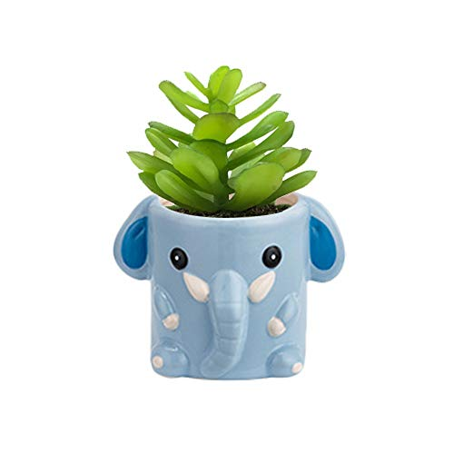 Cute elephant planter with succulent