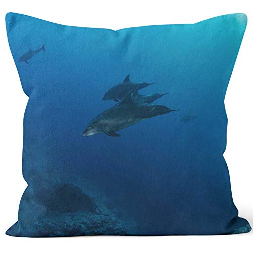 Nine City Bottlenose Dolphin at Socorro Island Throw Pillow Cushion Cover,HD Printing Decorative Square Accent Pillow Case,24