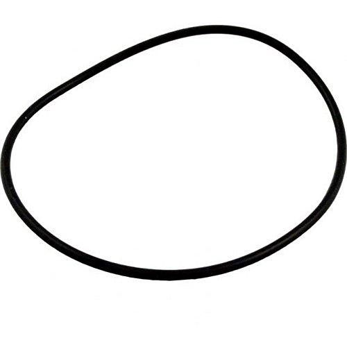 American Pentair O-ring (Pentair American Products O-Ring, Maxim, Americana II, Volute, O-400 #39101500)