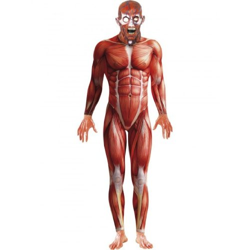 Men's Muscle Anatomy Anatomical Body Structure Bodysuit Costume Large 42-44 Red/White]()
