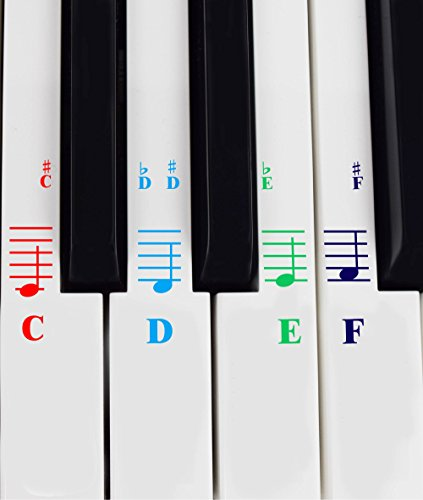 Piano Stickers for All White Keys (49/61/76 /88 Key Keyboards) - Transparent and Removable, Free Piano Ebook ()