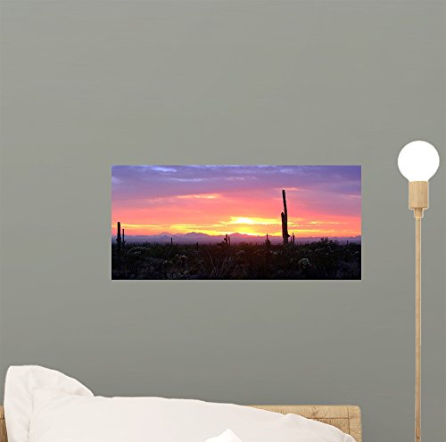 Arizona Decal Set (Arizona Sunset Wall Mural by Wallmonkeys Peel and Stick Graphic (12 in W x 6 in H) WM139597)