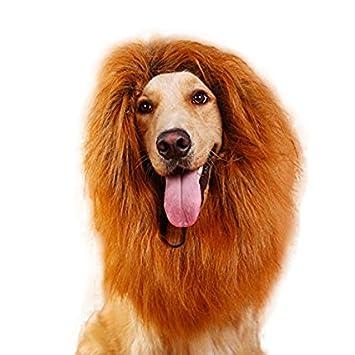 Peluca de león con orejas o sin orejas para disfrazar a perros de tamañ