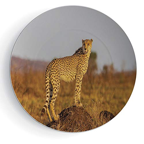 iPrint 7'' Safari Porcelain Plate African Wild Animal Cheetah Standing on Termite Mound Savannah Nature View Decorative by iPrint