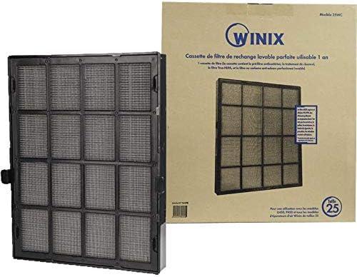 Winix 114290 - Filtro lavable para purificador de aire, tamaño 25: Amazon.es: Hogar