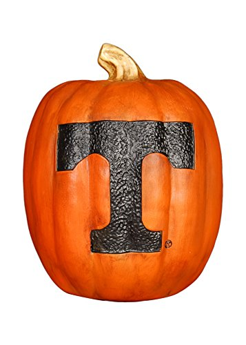 (Cumberland Designs Tennessee Resin Pumpkin Decor, Small)