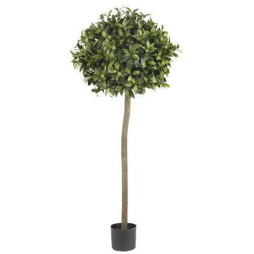 - Nearly Natural 5310 Sweet Bay Ball Topiary Silk Tree, 5-Feet, Green by Nearly Natural