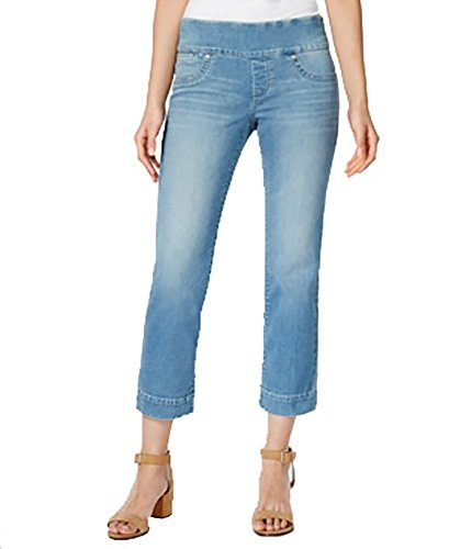 Style & Co. Pull-On Rinse Wash Capri Jeans (Visions, X-Small) (Jeans Wash Rinse)