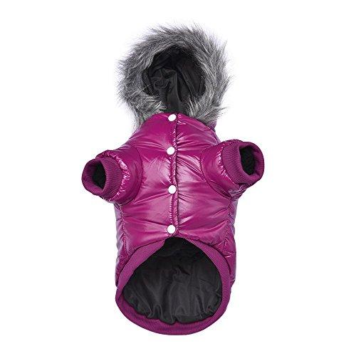 LESYPET Doggie Puppy Coat Vest Pet Ski Vest Waterpoof