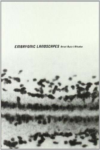 EMBRYONIC LANDSCAPES