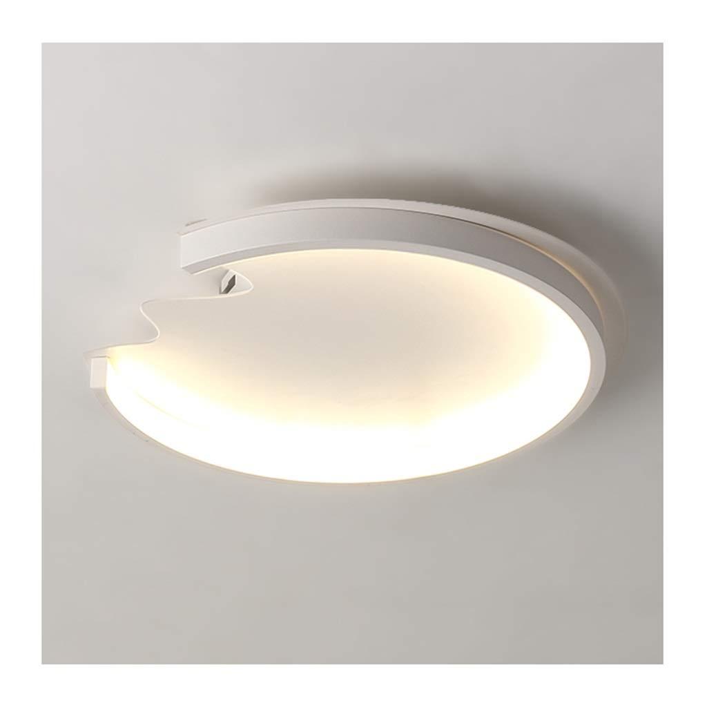 天井照明 シーリングライト - モダンなクリエイティブデザインシーリングランプ、LED調光対応アクリルアイロン、リビングルームの装飾寝室の研究子供の照明 シーリングライト (Color : Warm light)  Warm light B07T5Y8K5R