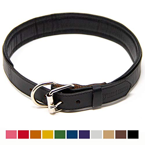 Logical Leather Padded Dog Collar - Best Full Grain Heavy Duty Genuine Leather Collar - Black - Extra Large