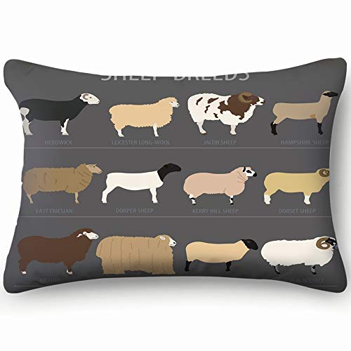 best bags Sheep Breed Icon Set Farm Animal Animals Wildlife Objects Throw Pillow Case Cushion Cover Double Side Design 20
