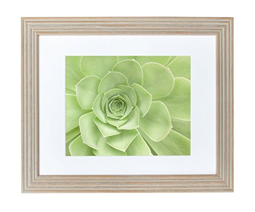 Framed Art Print - Botanical Wall Decor, Floral Sage Green Art, 11x14 Rustic Wood Picture Frame Displaying an 8x10 Photographic Print, 'Succulent Heart'