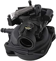TOOGOO Carburador 550Ex para Briggs&Stratton 799584 Fit Yard ...