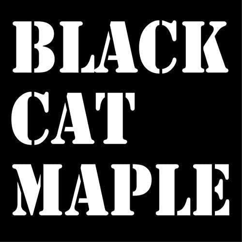 BLACK CAT MAPLE ブラックキャットメイプル 自家焙煎 self-roasted 受注後焙煎 roast by orders コーヒー豆 coffee beans (グアテマラ/guatemala, 400g)
