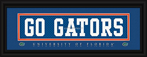 Florida Gators Stitched Uniform Slogan Print - Go Gators - Florida Gators Uniforms