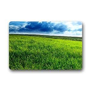 "doubb Custom natural hierba casa Welcome Felpudo al aire libre interior 60cm x 40cm (23.6x15.7"")"