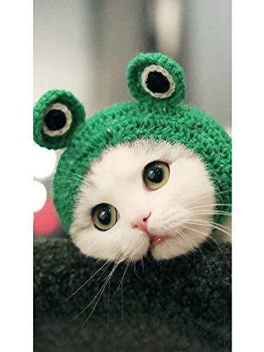 Aukmla Pet Cap Handmade Knitted Woolen Yarn Hat for Puppy Teddy Cartoon Frog Animal Dog Cat Grooming Accessories…