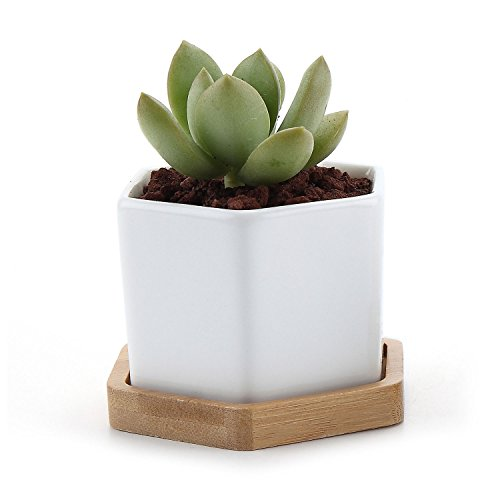 T4U 2.75' White Ceramic Pots Hexagon Succulent Cactus Planter with Free Bamboo Tray for Home Decoration