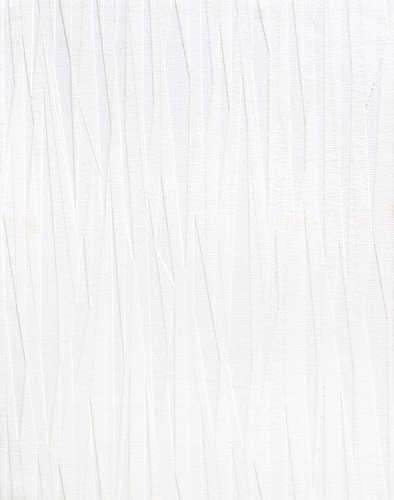 (Brewster RD80028 Anaglypta Paintable Folded Paper Stripes Wallpaper, 21-Inch by 396-Inch, White)