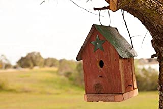 product image for DutchCrafters Rustic Bird House