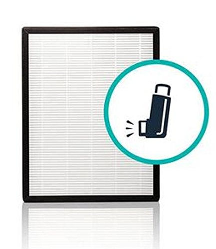 Alen Flex HEPA-Silver-Carbon Replacement Filter to Remove Allergens, Asthma, and Bacteria (FL40-Silver-Carbon, 1-Pack)