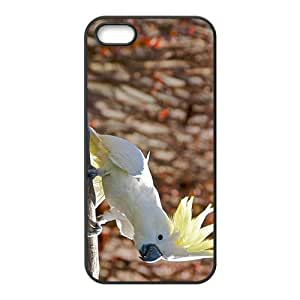 Parrot Hight Quality Plastic Case for Iphone 5s by icecream design