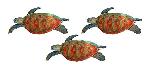Next Innovations WA3DTURTLE SET CB Sea Turtle Designs Refraxions 3D Wall Art, Set of 3
