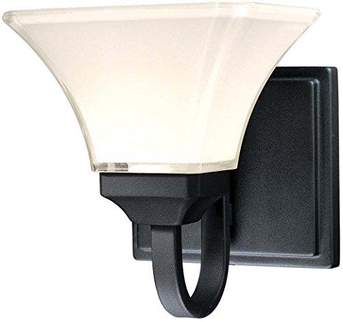 Minka Lavery Wall Sconce Lighting 6811-66, Agilis Glass Damp Bath Vanity Fixture, 1 Light, 100 Watts, Black
