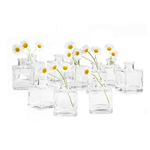 Chive - Loft, Small Glass Flower Vases, Decorative Rustic Floral Vases for Home Decor Centerpieces, Events, Single Flower Bud Vase, Vintage Look - Bulk Set (Clear Square Bulk 10)]()