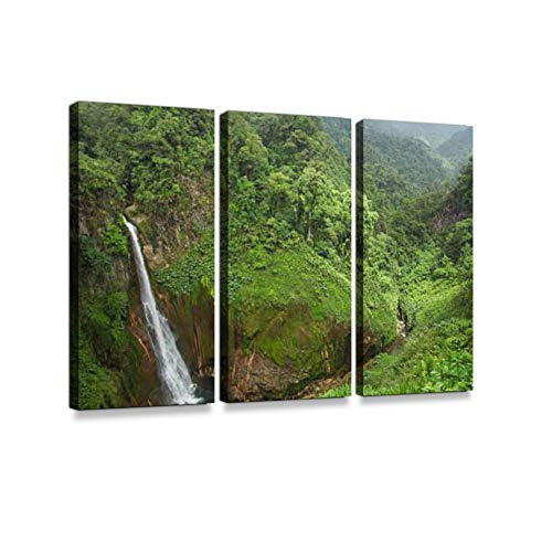 Waterfall in Juan Castro Blanco, National Park, Costa RIca 3 Pieces Print On Canvas Wall Artwork Modern Photography Home Decor Unique Pattern Stretched and Framed 3 Piece